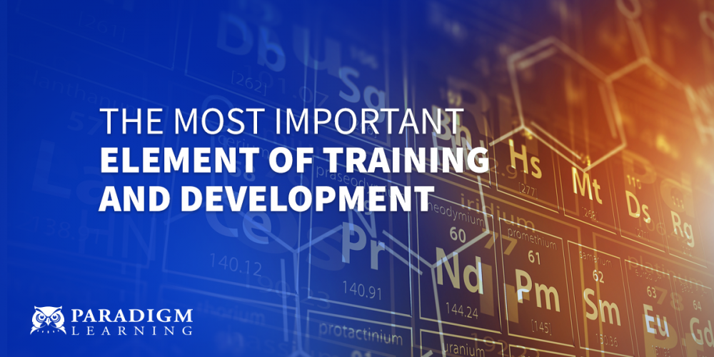 The Most Important Element of Training and Development | Paradigm Learning